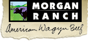 Logo Dan Morgan Ranch